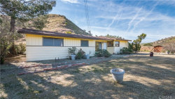 Photo of 30325 N Brandywine Canyon Road, Canyon Country, CA 91351 (MLS # SR19088493)