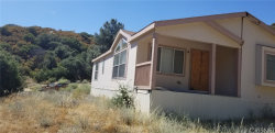 Photo of 20129 Pine Canyon Road, Lake Hughes, CA 93532 (MLS # SR19213343)