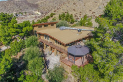 Photo of 9235 Northside Drive, Leona Valley, CA 93551 (MLS # SR20031200)