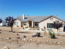Photo of 21705 Twin Canyon Dr., Nuevo/Lakeview, CA 92567 (MLS # SW19088780)