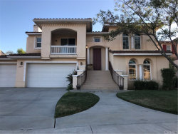 Photo of 21679 Pink Ginger Court, Wildomar, CA 92595 (MLS # SW19097061)