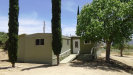 Photo of 60771 Indian Paint Brush Road, Anza, CA 92539 (MLS # SW19243323)