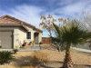 Photo of 15023 Dragon Tree Drive, Adelanto, CA 92301 (MLS # TR20025321)