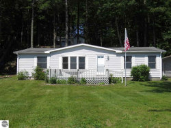 Photo of 7482 Crystal Drive, Beulah, MI 49617 (MLS # 1833703)