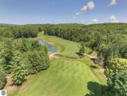 Photo of 4982 Forest Trail, Bellaire, MI 49615 (MLS # 1836957)