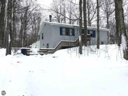 Photo of 1651 N Betsie River Road, Interlochen, MI 49643 (MLS # 1855730)