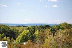 Photo of Fox Mission Trail , Lot 8, Eastport, MI 49729 (MLS # 1747431)