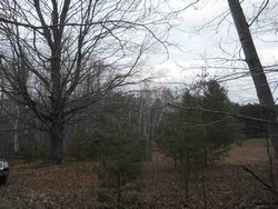 Photo of 5804 N M-88, Eastport, MI 49622 (MLS # 1783673)