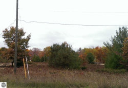 Photo of LOT 16 Arrowhead Court, Eastport, MI 49627 (MLS # 1791506)