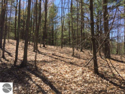 Photo of Lot 31 Maple View Drive, Central Lake, MI 49622 (MLS # 1831976)