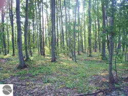 Photo of N Our Majestic Trail, Suttons Bay, MI 49682 (MLS # 1832829)