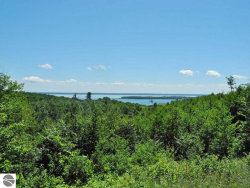 Photo of 1930 N Blue Water Court, Suttons Bay, MI 49682 (MLS # 1835633)
