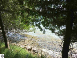 Photo of 00 S East Torch Lake Drive, Bellaire, MI 49615 (MLS # 1836799)
