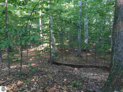 Photo of Lot 73 S Bay View Trail, Suttons Bay, MI 49682 (MLS # 1838522)