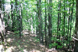 Photo of E Omena Road, Northport, MI 49670 (MLS # 1838801)