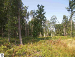 Photo of 00 S Glen Lake Road, Glen Arbor, MI 49636 (MLS # 1838894)