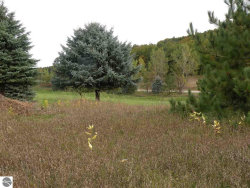 Photo of Site #43 Golf Meadows Drive, Bellaire, MI 49615 (MLS # 1839598)