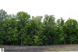 Photo of Westwood Road, Mancelona, MI 49659 (MLS # 1842176)