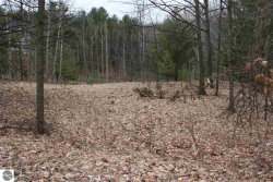 Photo of Lot 72 & 73 Hilltop Drive, Rapid City, MI 49676 (MLS # 1844619)