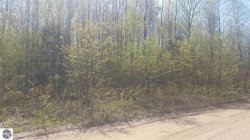 Photo of Lot 1 NE Plum Valley Road, Rapid City, MI 49676 (MLS # 1845652)