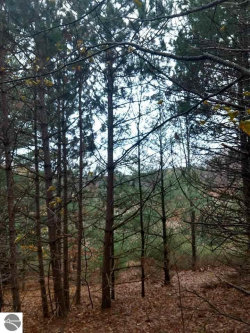 Photo of TBD Maple View Drive, Central Lake, MI 49622 (MLS # 1849542)