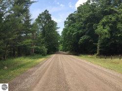 Photo of 0000 Cemetery Road, Alden, MI 49612 (MLS # 1851710)