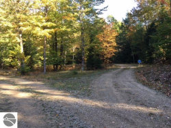 Photo of Eden Woods Court , Lot 6 & 9, Eastport, MI 49627 (MLS # 1852944)