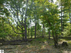 Photo of Maxey Road, Arcadia, MI 49613 (MLS # 1852962)