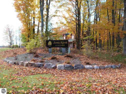 Photo of Lot 44 Chickadee Lane, Thompsonville, MI 49683 (MLS # 1854627)