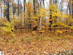Photo of 000 White Birch, Grawn, MI 49637 (MLS # 1854731)