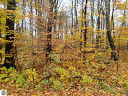 Photo of 000 White Birch Drive, Grawn, MI 49637 (MLS # 1854739)