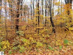 Photo of 000 White Birch Drive, Grawn, MI 49637 (MLS # 1854740)