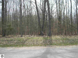 Photo of E Duck Lake Road, Grawn, MI 49637 (MLS # 1855541)