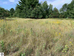 Photo of Lot 30 Taxiway Hotel, Lake City, MI 49651 (MLS # 1855808)