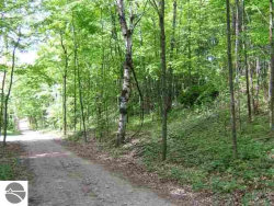 Photo of Lot 14 Stratton Lane, Frankfort, MI 49635 (MLS # 1857680)