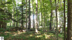 Photo of 5 Tree Tops Lane, Frankfort, MI 49635 (MLS # 1857884)