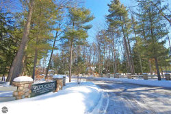 Photo of 23 Deer Park, Glen Arbor, MI 49636 (MLS # 1857930)