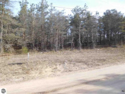 Photo of Parcel E2 Railroad Trail, Benzonia, MI 49616 (MLS # 1858544)