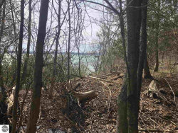 Photo of 000 SW Torch Lake Drive, Rapid City, MI 49629 (MLS # 1860963)