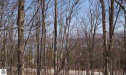 Photo of 1155 N Manitou Trail, Leland, MI 49654 (MLS # 1861737)