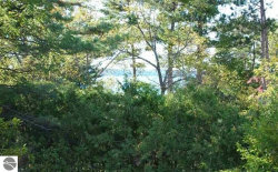 Photo of Lot 173 Ottawa Street, Elk Rapids, MI 49629 (MLS # 1865054)