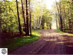Photo of S Micheals Woods Trail, Maple City, MI 49664 (MLS # 1865289)