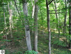 Photo of Lot 88 S Bay View Trail, Suttons Bay, MI 49682 (MLS # 1865384)
