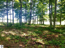 Photo of 008 Heather Ridge Trail, Beulah, MI 49617 (MLS # 1866244)