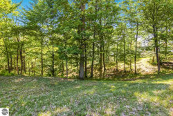 Photo of 0013 Heather Ridge Trail, Beulah, MI 49617 (MLS # 1866248)