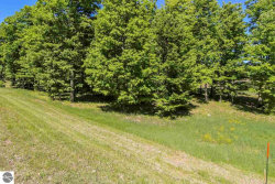 Photo of 0018 Heather Ridge Trail, Beulah, MI 49617 (MLS # 1866253)