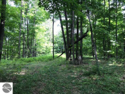 Photo of 20Acres Zimmerman Road, Rapid City, MI 49676 (MLS # 1867889)