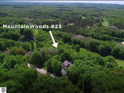 Photo of 000-Unit 25 Mountain Woods Drive, Thompsonville, MI 49683 (MLS # 1870146)