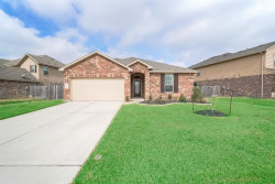 Photo of 24311 S Newcastle Bay Trail, Spring, TX 77389 (MLS # 1005115)