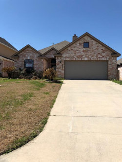 Photo of 13419 E Summerchase Circle, Willis, TX 77318 (MLS # 11627291)